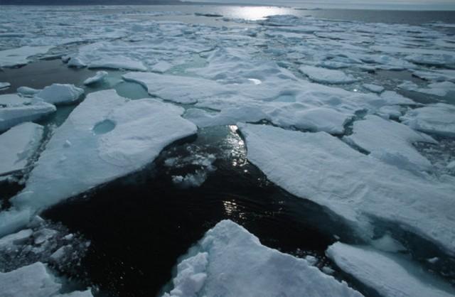 Дрейфующий лед