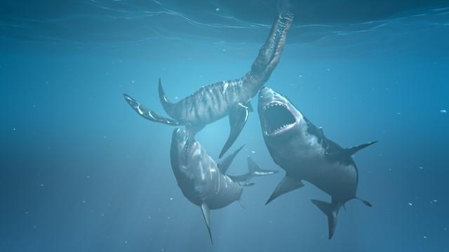 Хищные акулы