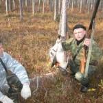 Сроки охоты