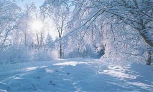 Снега