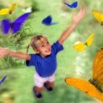 Образ жизни, центральная Африка, полезные растения, коллекция бабочек, наука о бабочках
