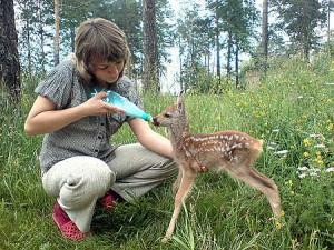 Юные натуралисты, большие глаза, лесной пожар, имя человека, привлекательный вид