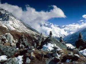 Значение ледников