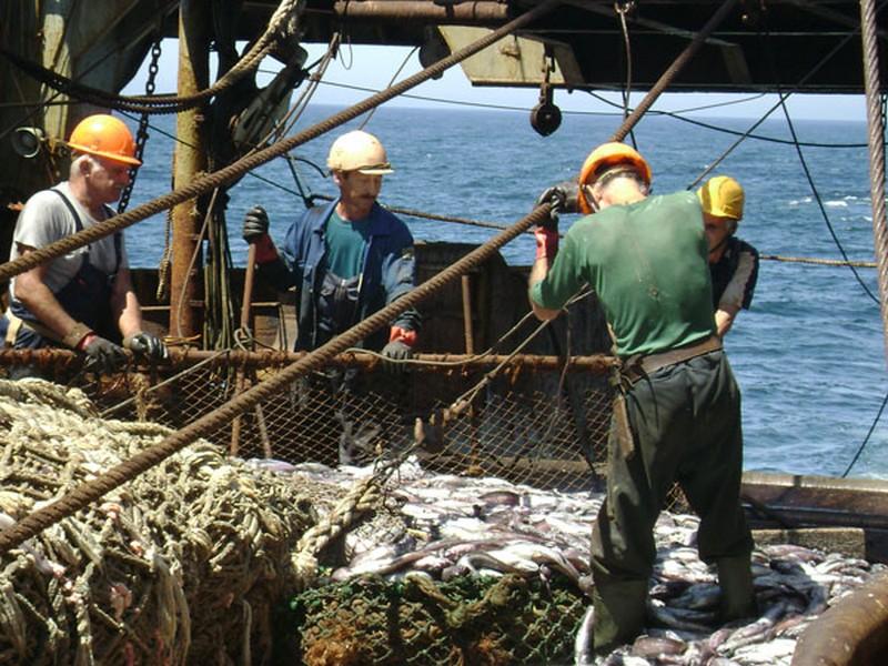 добыча рыболовный канал