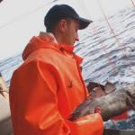 Мечение рыб