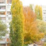 Поздней осенью
