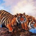 Тигры людоеды