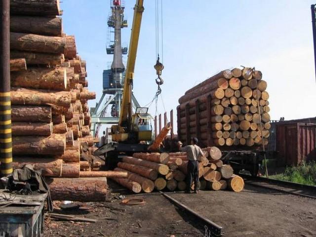 Поставки древесины