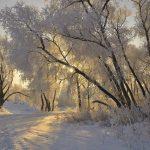 Начало зимы и погода