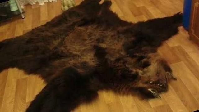 Медвежья шкура