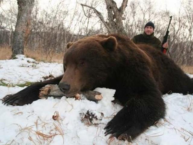 Убить медведя