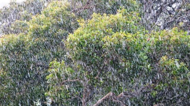 Крупный дождь