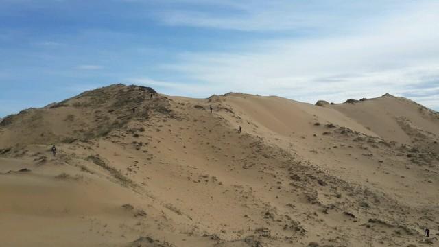 Бесплодные пески