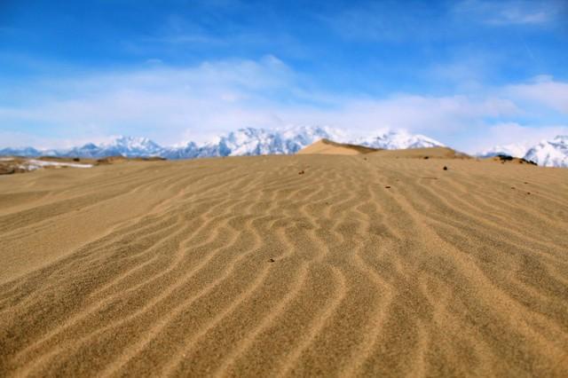 Рост пустынь