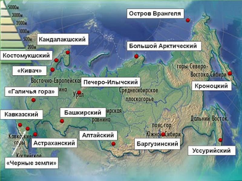 Природные заповедники России